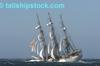 Tall_ships_race_2006_10