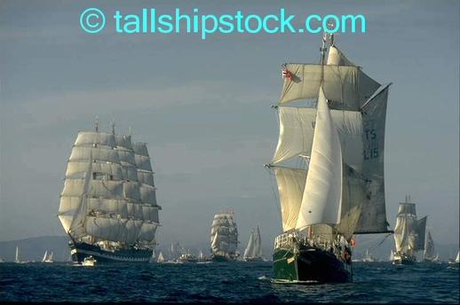 Tall_ships_race_07