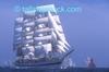 Tall_ships_race_01
