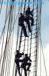 Tall_ships_race_crew_02
